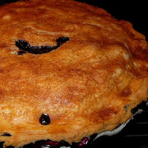 Don's Blueberry Pie
