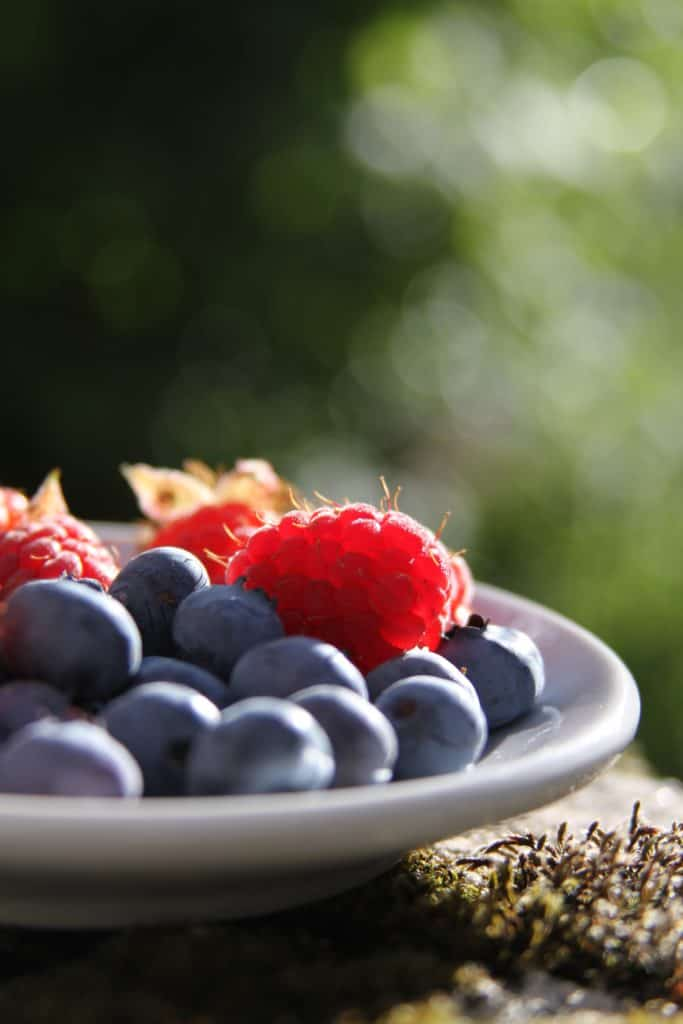 Bowl of berries. Photo by Tiago Faifa/Unsplash