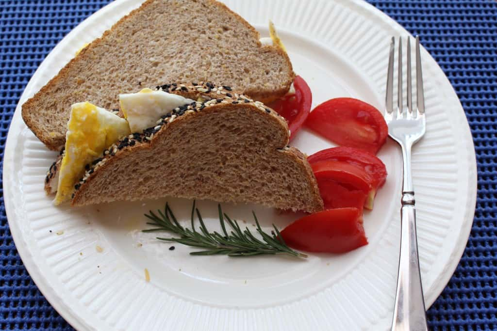 Fried Egg Sandwich with Mayo, Mustard and Cheese.