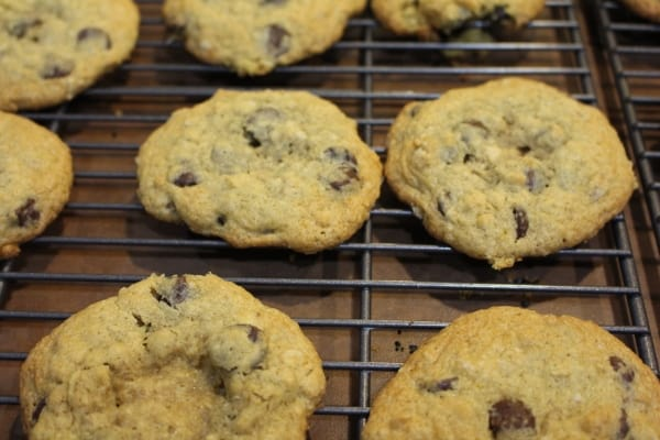 Chocolaty Chip Gluten Free Cokkies