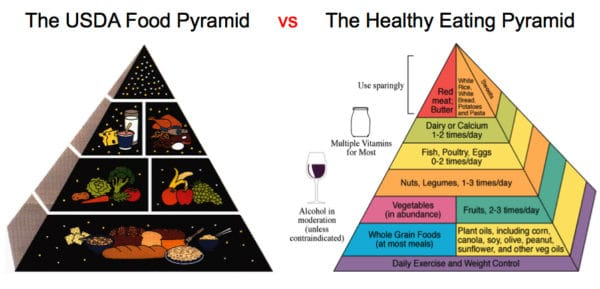 Losing weight is tough. Food pyramids. Photo courtesy of Georgetown University.