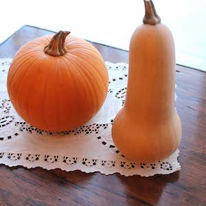It's squash and pumpkin season. Shown here: pumpkin (left) and butternut squash (right). What's your favorite?
