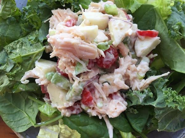 Apple Tomato Chicken Salad