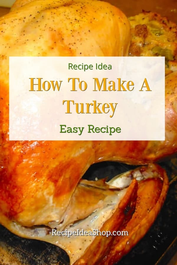 How to Make a Turkey. Easy peasy. And you don't have to ask your mom. #howtomakeaturkey #thanksgiving #friendsgiving #turkey #comfortfood #easyrecipes #recipes #recipeideashop