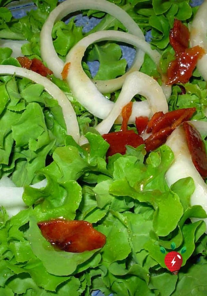 Wilted Lettuce with Warm Bacon Dressing. Super easy. #WiltedLettuceBaconDressing #HotBaconDressing #SaladRecipes #Recipes #GlutenFree #DairyFree #Bacon#HealthyTwist #RecipeIdeaShop